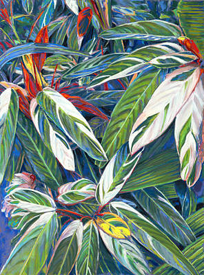 Painting - Stromanthe Sanguinea by Nick Payne