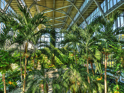 In The Conservatory Original by William Fields