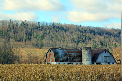 Bringing The Outdoors In - In the Corn Field by Jennifer Robin
