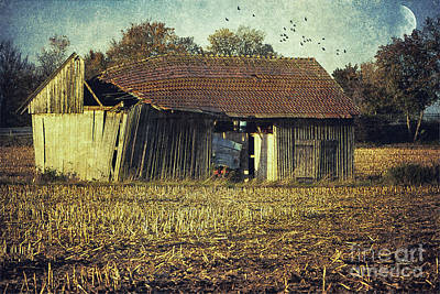 Shed Digital Art - In The Country by Jutta Maria Pusl