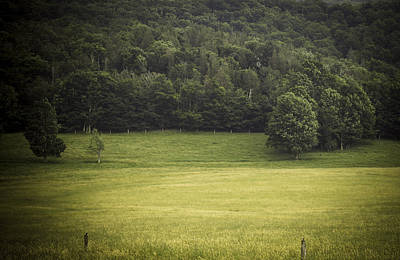 Canaan Valley Photograph - In The Country by Shane Holsclaw