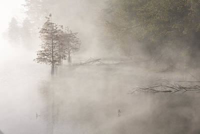 Photograph - In The Fog 02 2008 by Jim Dollar