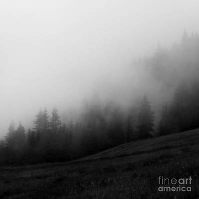 In The Fog Art Print