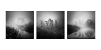 Photograph - In The Fog Collage by Alexander Kunz