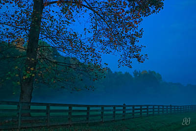 Photograph - In The Fog by Geri Glavis