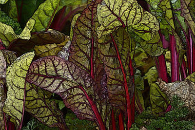 In The Garden - Red Chard Jungle Art Print