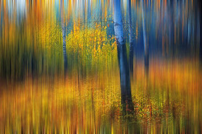 Impressionism Photos - In the Golden Woods. Impressionism by Jenny Rainbow