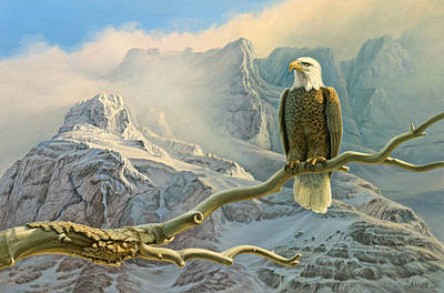 In The High Country-eagle Art Print by Paul Krapf