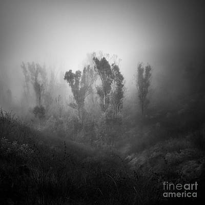 Photograph - In The Hills by Alexander Kunz