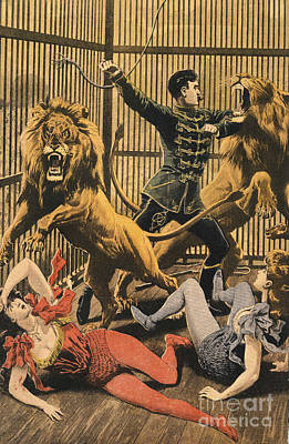 Nineteen-tens Drawing - In The Lion�s Cage 1910s Uk Lion Tamers by The Advertising Archives