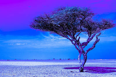 In The Middle Of Nowhere Under A Purple Sky Art Print