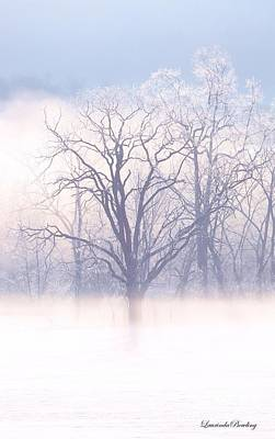 In The Mist Art Print by Laurinda Bowling
