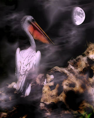Photograph - In The Misty Moonlight by Wayne Wood