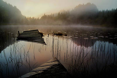 Natur Photograph - In The Misty Morning by Willy Marthinussen