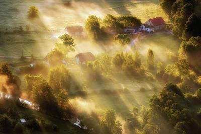 Morning Light Wall Art - Photograph - In The Morning Sun by Piotr Krol (bax)