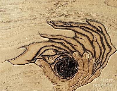 Pyrography Pyrography - In The Palm Of Our Hands by TK Mayfield