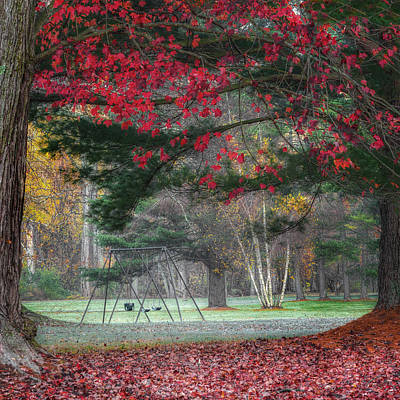 In The Park Square Art Print by Bill Wakeley
