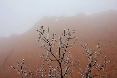 Photograph - In The Quiet Of The Fog 3 by Diane Alexander