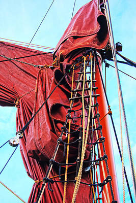 Photograph - In The Rigging by David Davies