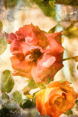 Floral - In The Rose Garden Art Print by Barry Jones