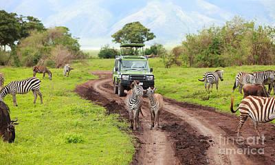 In The Safari Print by Boon Mee