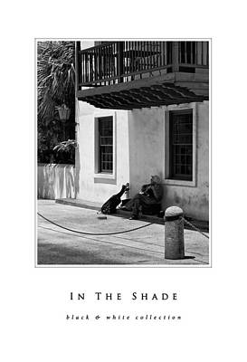 Photograph - In The Shade Black And White Collection by Greg Jackson