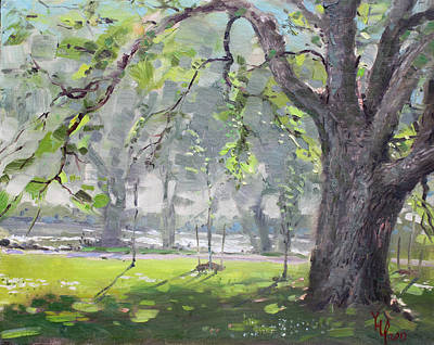 In The Shade Of The Big Tree Art Print by Ylli Haruni
