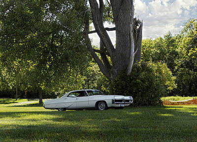 Big Tree Photograph - In The Shade by Peter Chilelli
