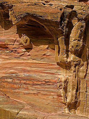 In The Shadow Of A Rock In Petra-jordan Original by Ruth Hager