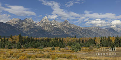 Photograph - In The Shadow Of The Tetons by Sandra Bronstein