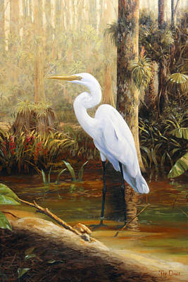 Great Egret Painting - In The Shallows by Tim Davis