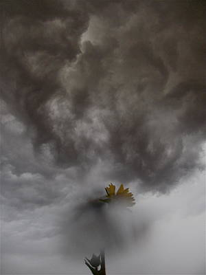 Photograph - In The Storm by Tim Good