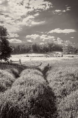 Photograph - In The Valley - Scottsdale Farm by Alan Norsworthy