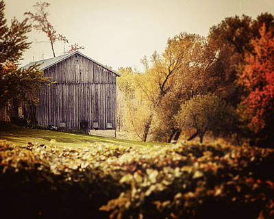 In The Vineyard - Barn Landscape Art Print by Lisa Russo