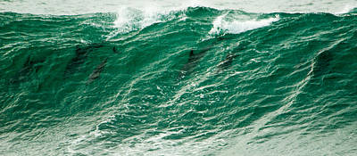 Photograph - In The Wave by Alistair Lyne