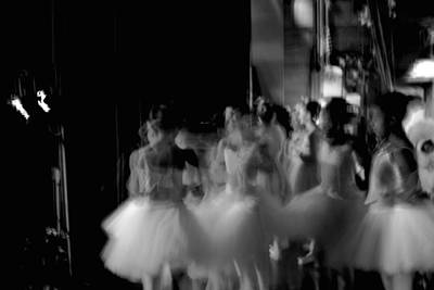 Photograph - In The Wings 2 by Robin Mahboeb