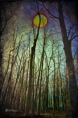 In The Woods At Night Art Print by Bill Cannon