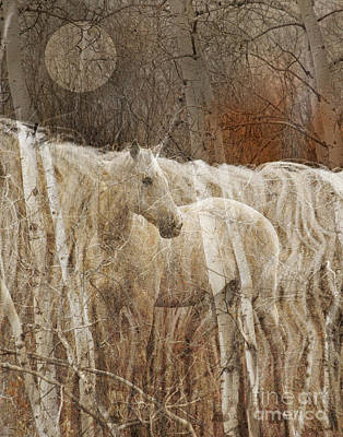 Judy Wood Digital Art - In The Woods by Judy Wood