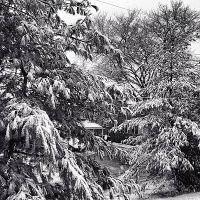 Art Print featuring the photograph In Winter by Toni Martsoukos