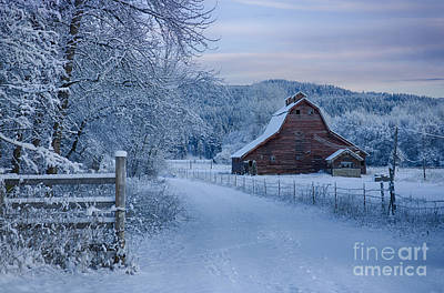 Photograph - In Winter White by Idaho Scenic Images Linda Lantzy
