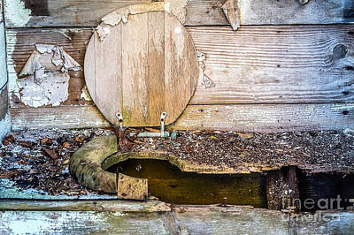 Nikki Vig Royalty-Free and Rights-Managed Images - Inactive Outhouse by Nikki Vig