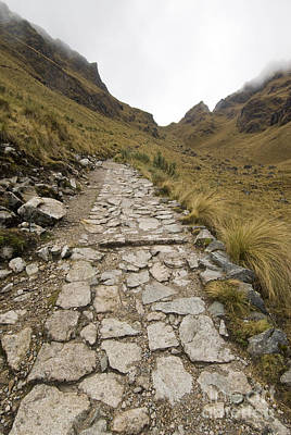 Inca Trail Print by William H. Mullins