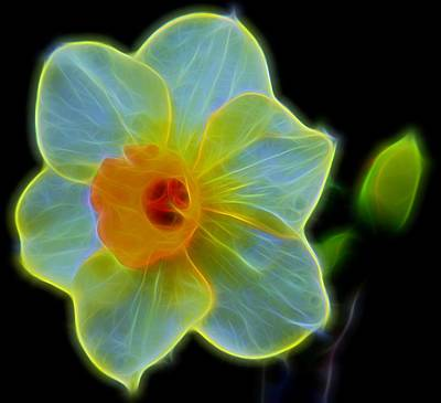 Photograph - Incandescent by Judy Vincent