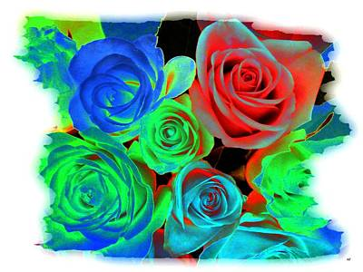 Incandescent Roses Art Print by Will Borden