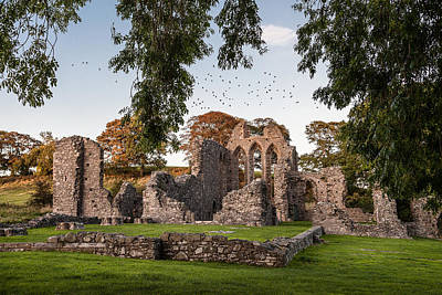 Photograph - Inch Abbey by George Pennock