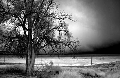 Winter Landscapes Photograph - Incoming Storm by Cat Connor