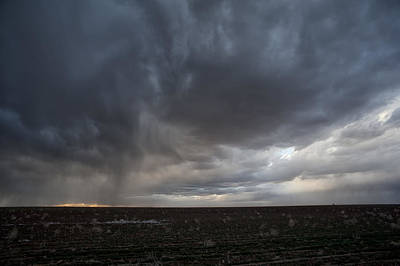 Photograph - Incoming Storm Over A Cotton Field by Melany Sarafis