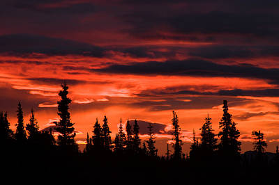 Photograph - Incredible Red Clouds Over Denali by Jeff Folger
