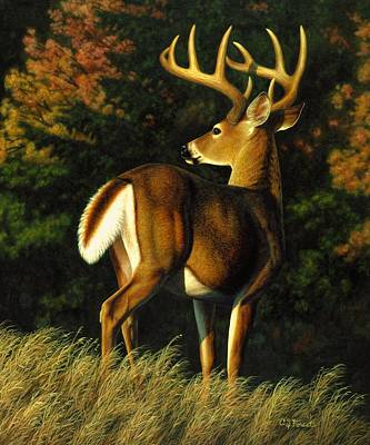 Whitetail Buck - Indecision Original by Crista Forest
