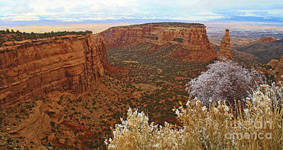Photograph - Independence Canyon by Roena King